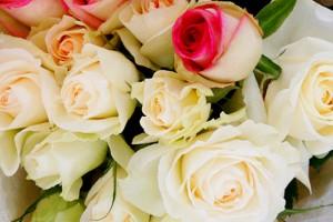 白系バラの花束3