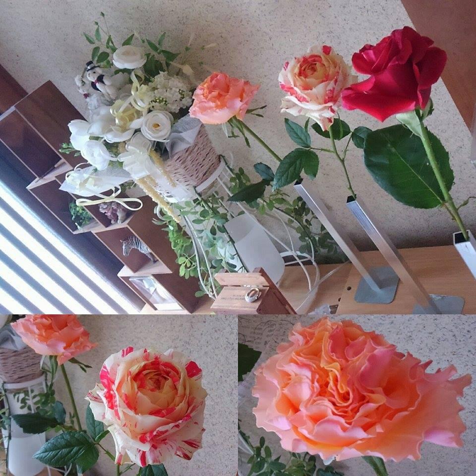 お客様がベルローズのバラたちを活けたお写真を送ってくださいました。