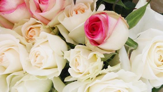 白系癒しの花束3