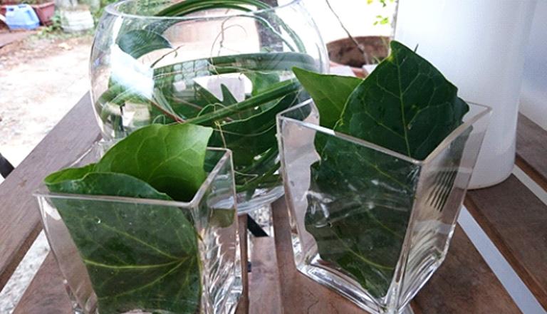 大きな花瓶でドンと活けるのもいいですが、夏らしい涼しげな器をいくつか用意して、分けて活けるのも素敵です。