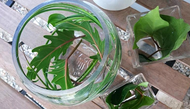 グリーンを入れ、花器の外側から見た時に、バラの茎の部分が寂しくないように変化をつけます。
