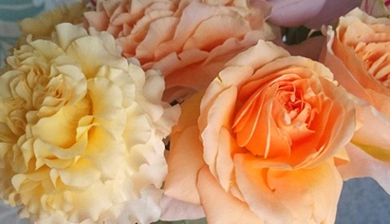 挿して数日したら、このように吸水力が落ち、花がしおれ始めます。 花びらに力がないと感じ始めたら、茎を短く落としてあげましょう。
