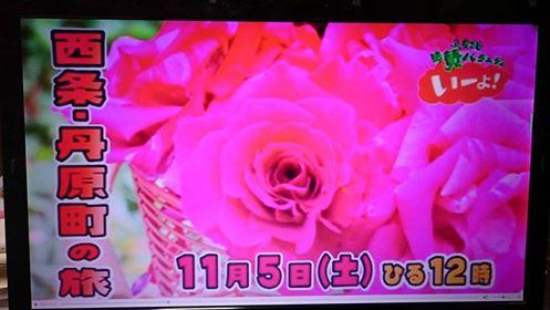 【TV出演】絶賛バラエティー「いーよ!」【丹原特集】