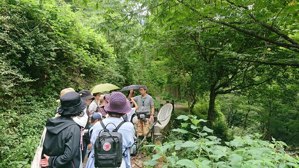 森のこころ音・面河山岳博物館