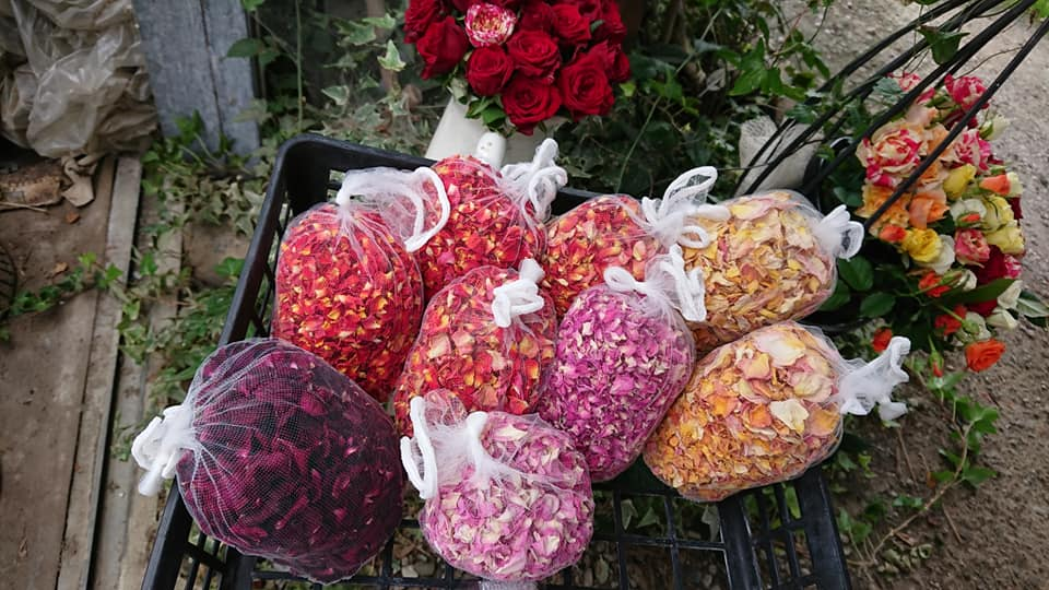 バラの花びら染め体験