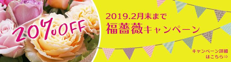 福薔薇キャンペーン