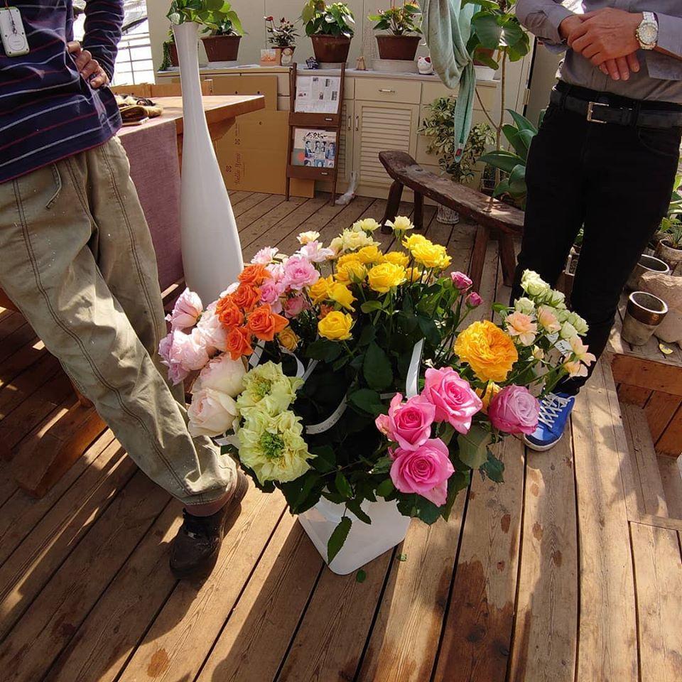 京成バラ園さんとの品種検討会