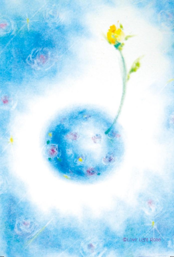 妖精ポストカード(地球に咲く波動バラ)