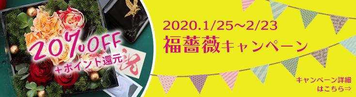 2020福薔薇キャンペーン