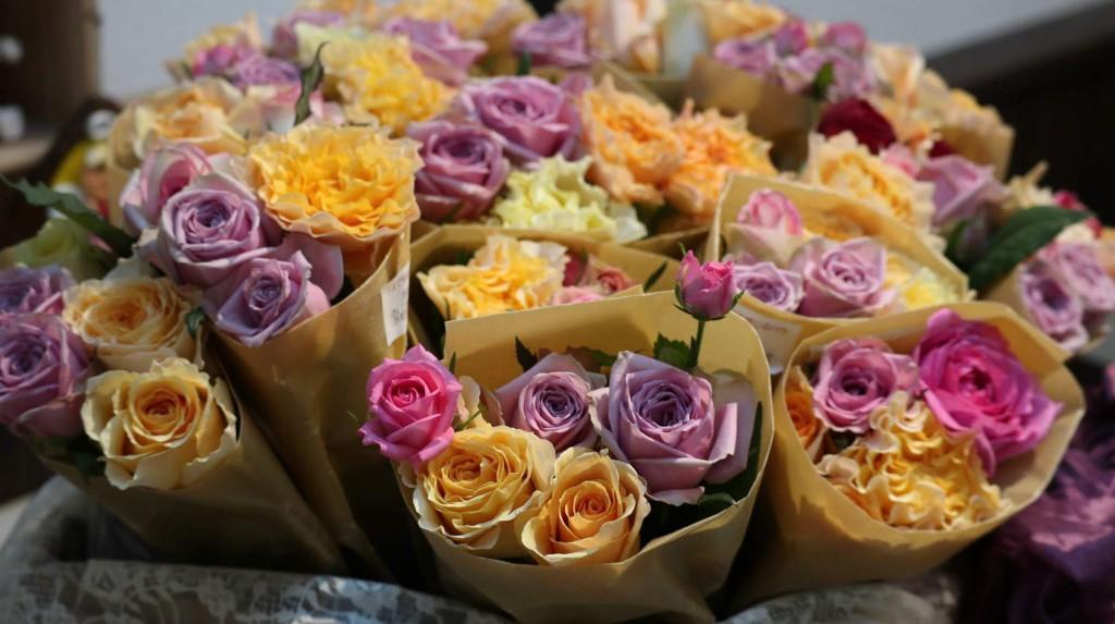 <緊急企画>幸せの薔薇お届けします【3/13(金)11時~15時】