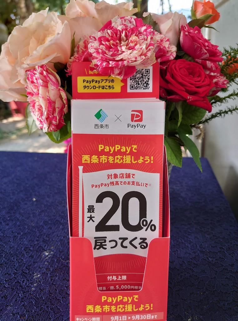 【9月1日~9月30日 20%off】西条市 ✖️ PayPay