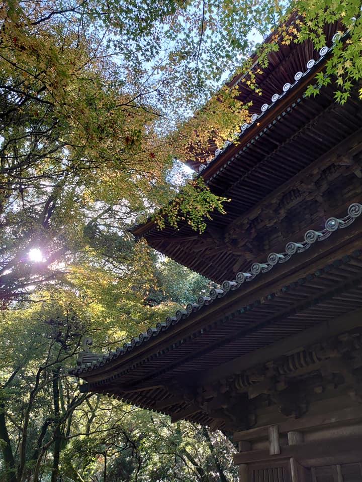 地元を学ぶ~西山興隆寺