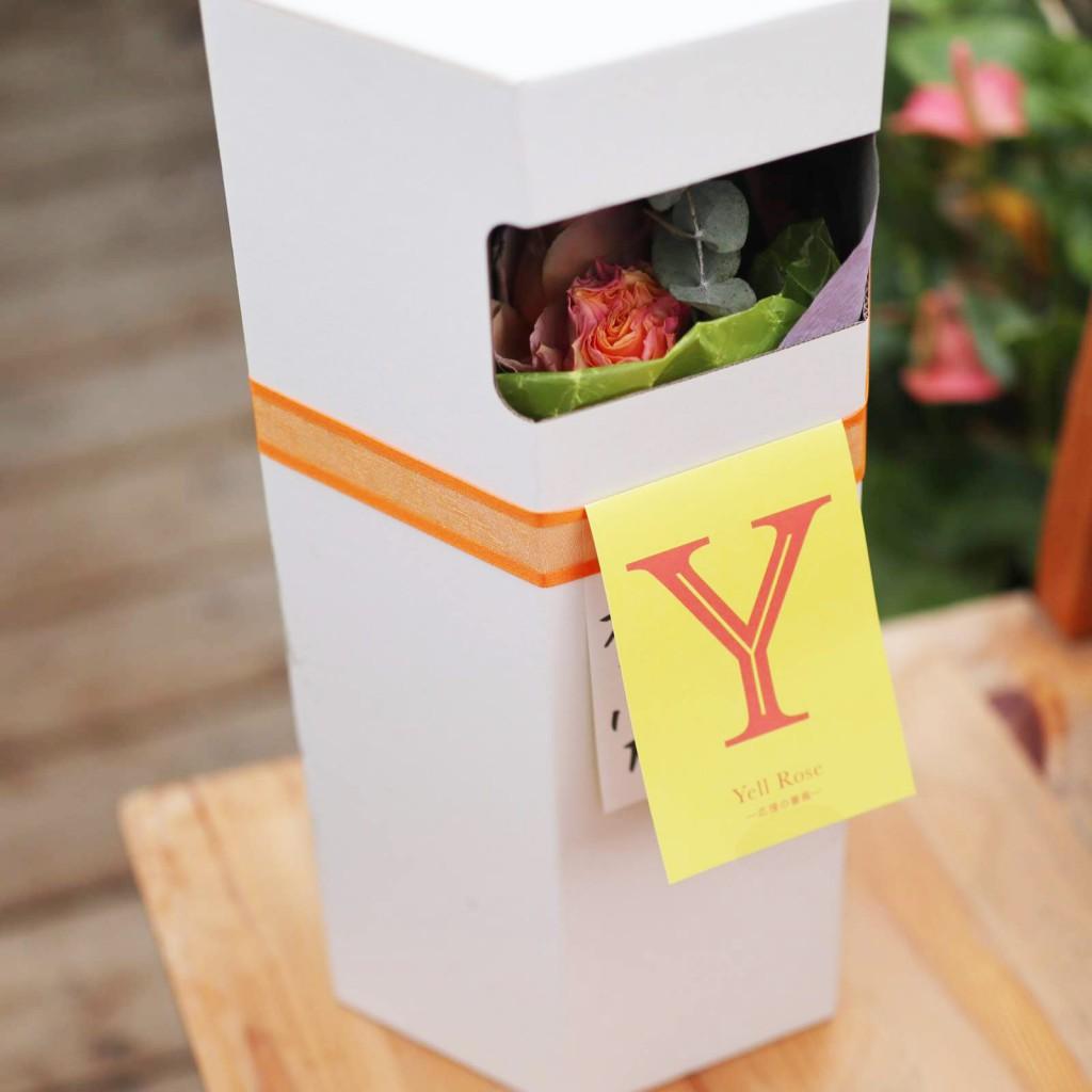 【3,300円】Yell Roseキャンペーン【3/31発送分まで限定販売】